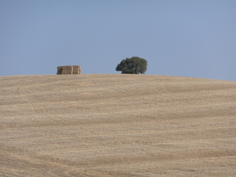 Sierra Norte de Cadiz